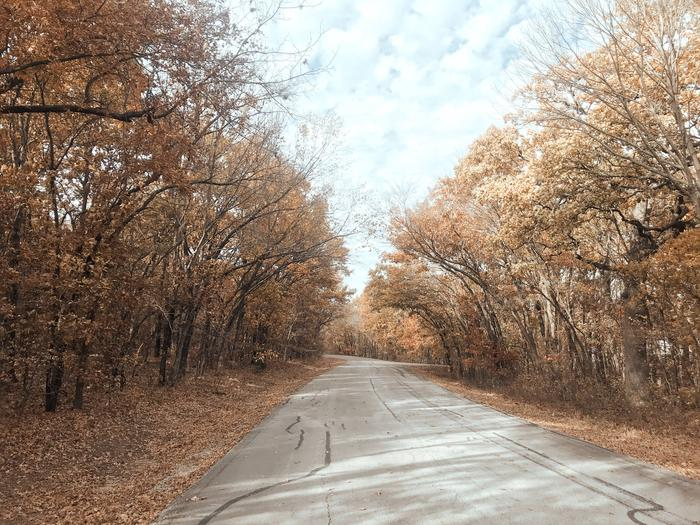 Redbud Bay entry road in the fall 2Redbud Bay entry road in the fall 2