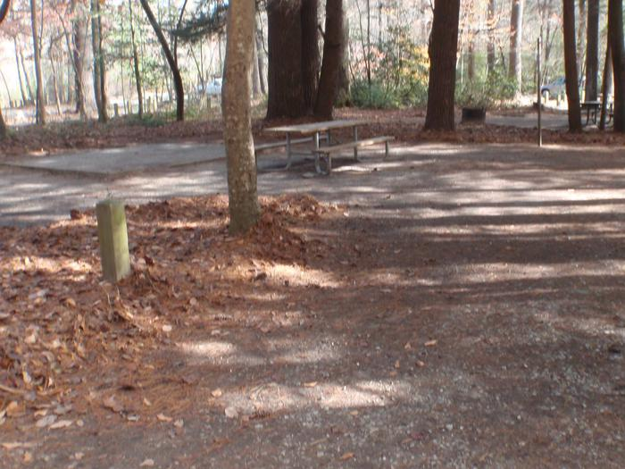 Site 6 is right across the road from the Toccoa River.Site 6