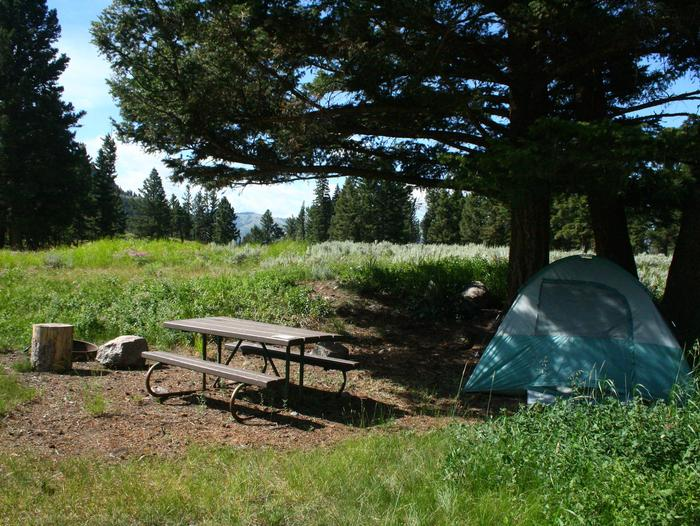 Slough Creek Campground site #8Slough Creek Campground site #8 has afternoon shade and sits in a meadow.