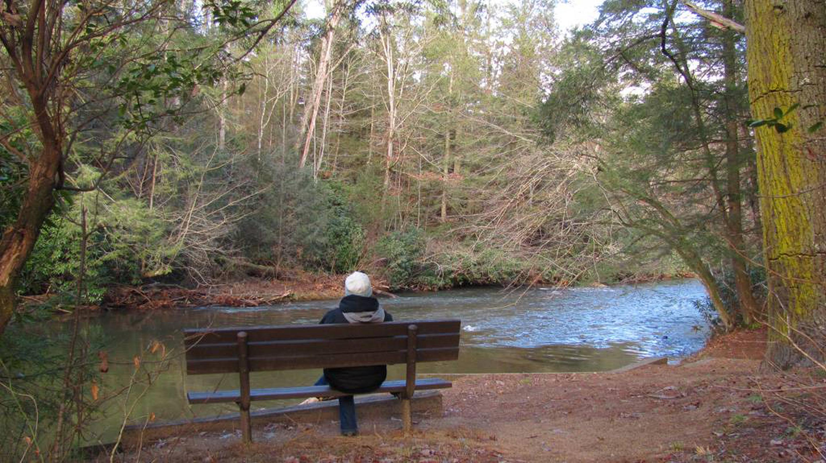 Toccoa RiverBench Close to Fishing Pier