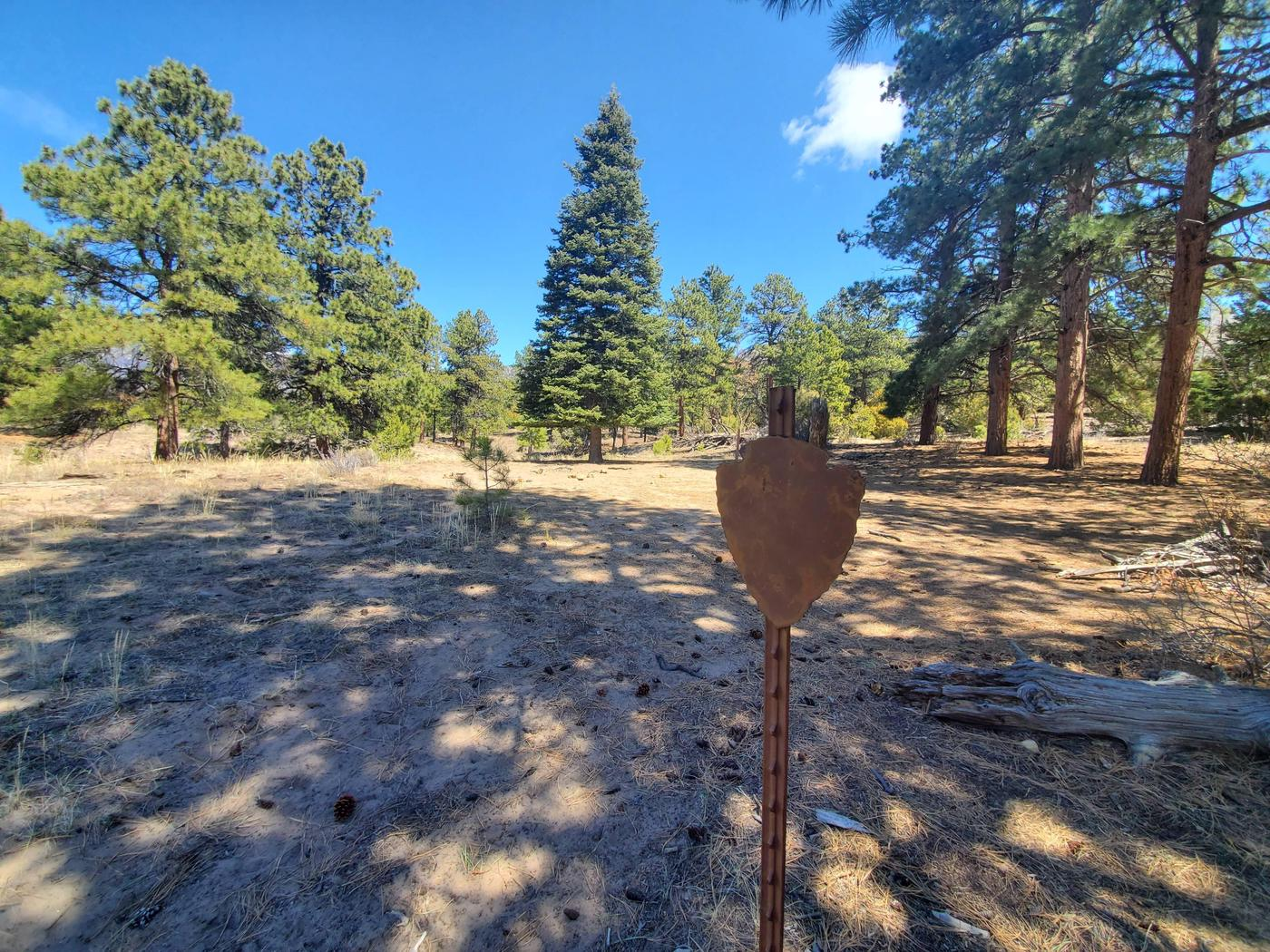 A flat sandy area surrounded by pine trees, with a metal sign in the middle marking the Escape Dunes campsite.Escape Dunes is one of the designated backcountry sites, marked with a metal arrowhead sign.