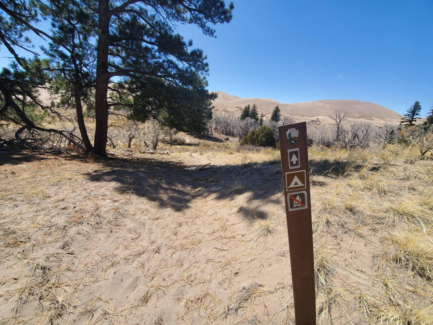 A fiberglass sign marking a sandy trail with dunes in the background near the Indian Grove campsite.While hiking along the trail, this sign marks that you are about to arrive at the Indian Grove campsite.