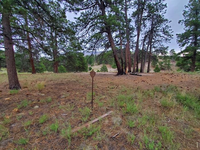 A flat grassy area surrounded by pine trees, with a metal sign in the middle marking the Little Medano campsite.Little Medano is one of the designated backcountry sites, marked with a metal arrowhead sign.