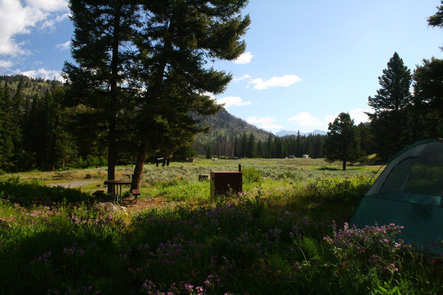 Slough Creek Campground site #14