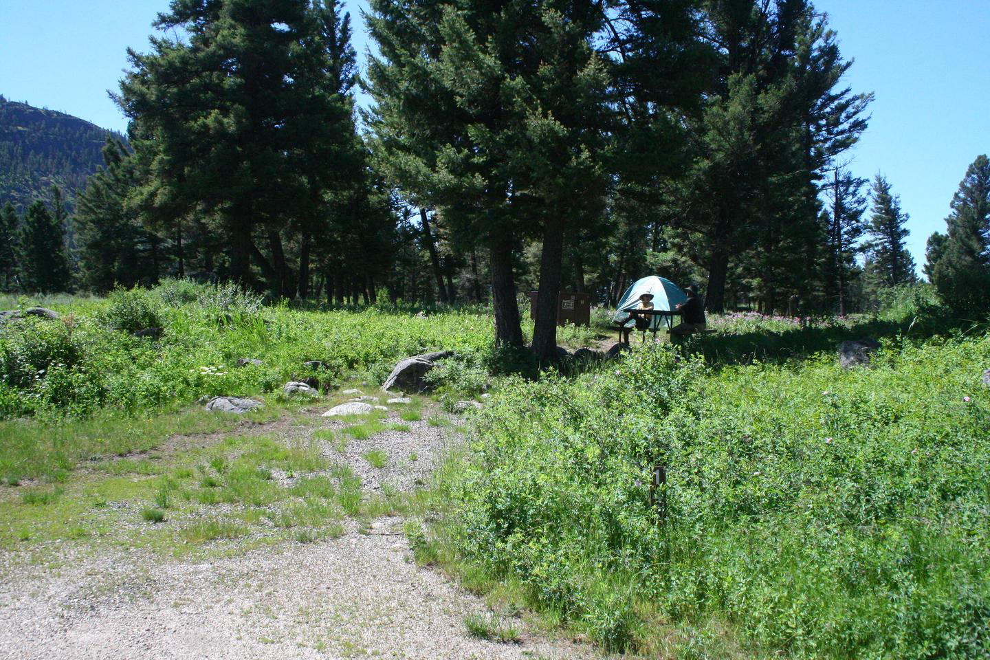 Slough Creek Campground site #14.Slough Creek Campground site #14