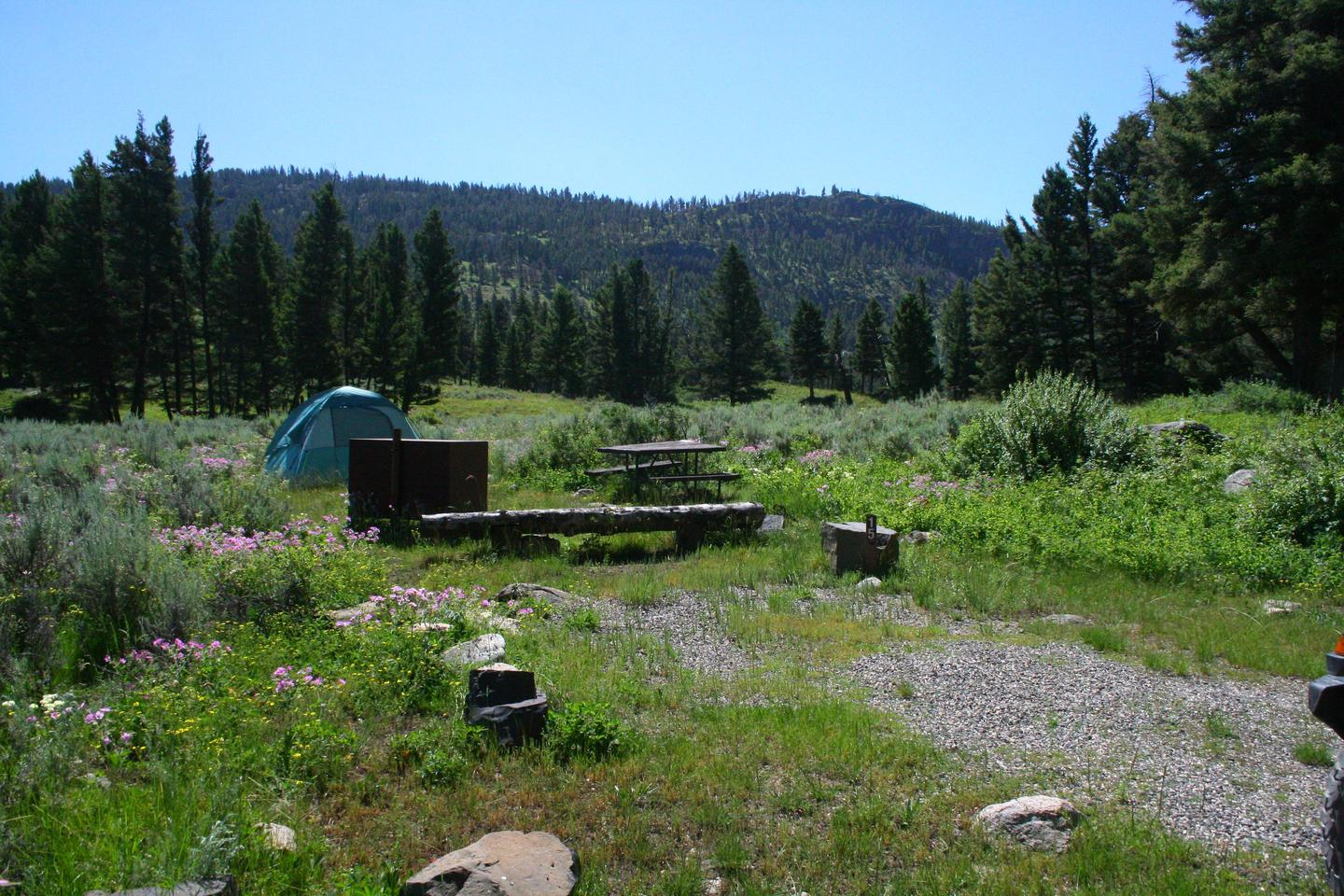 Slough Creek Campground site #15...Slough Creek Campground site #15