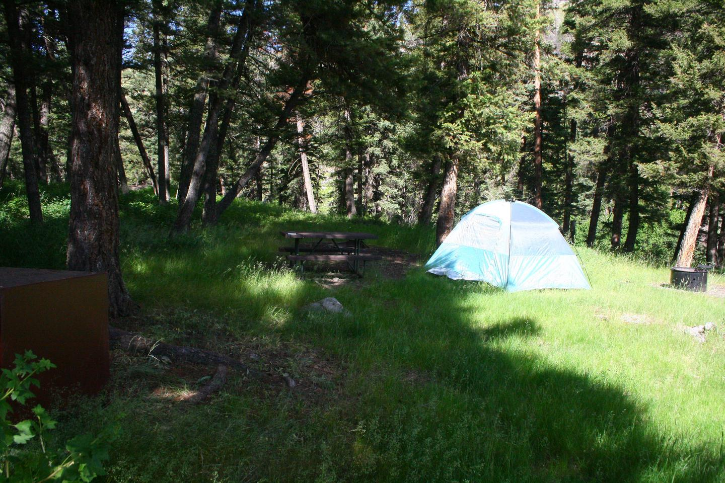 Slough Creek Campground site #13