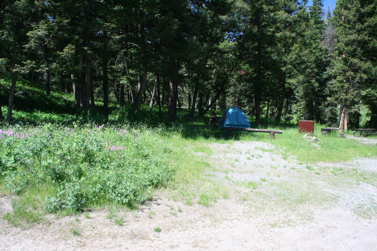 Slough Creek Campground site #13..Slough Creek Campground site #13