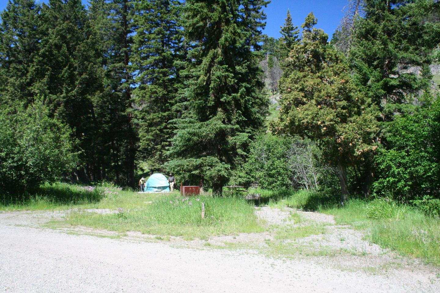 Slough Creek Campground site #11...Slough Creek Campground site #11