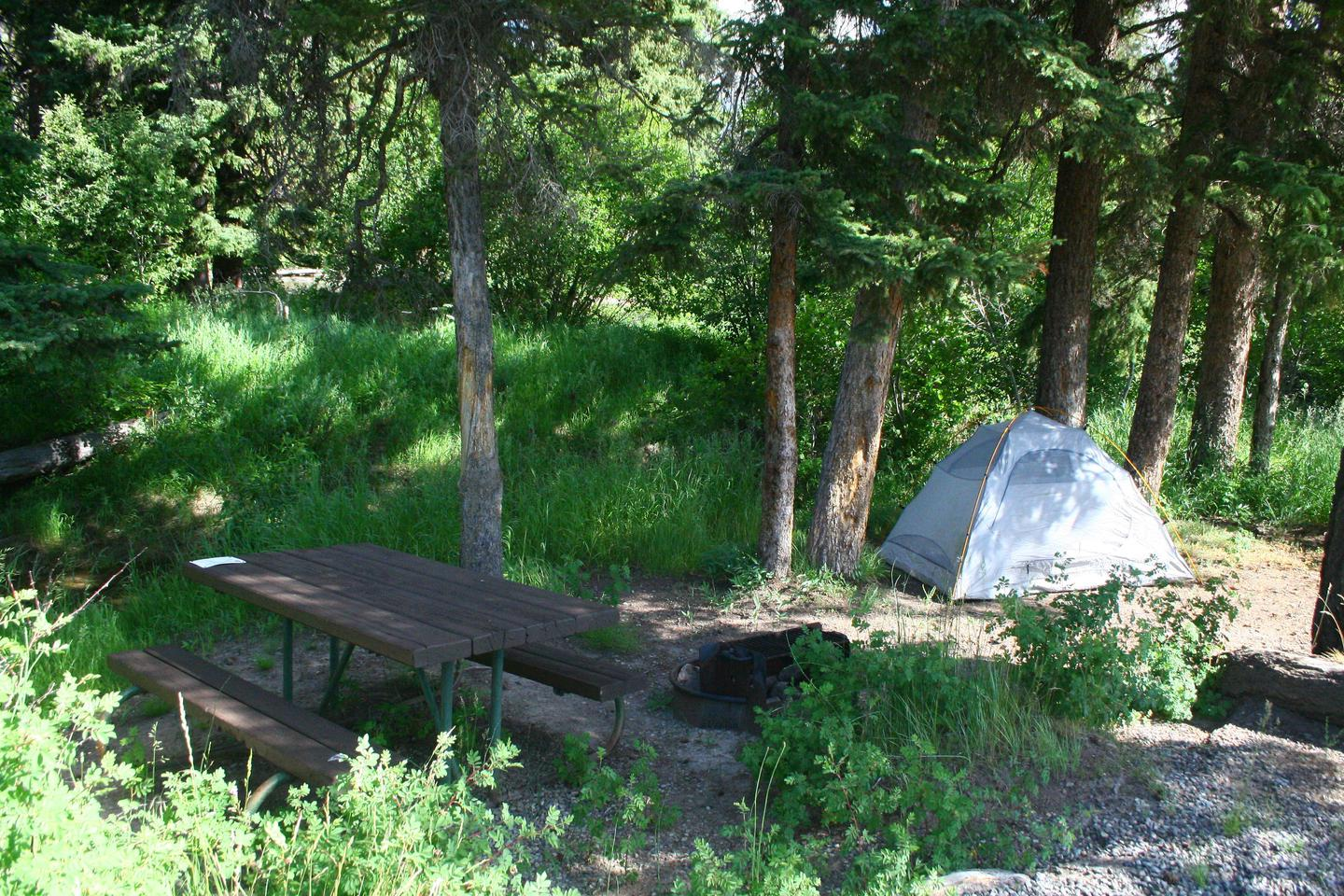 Slough Creek Campground site #10