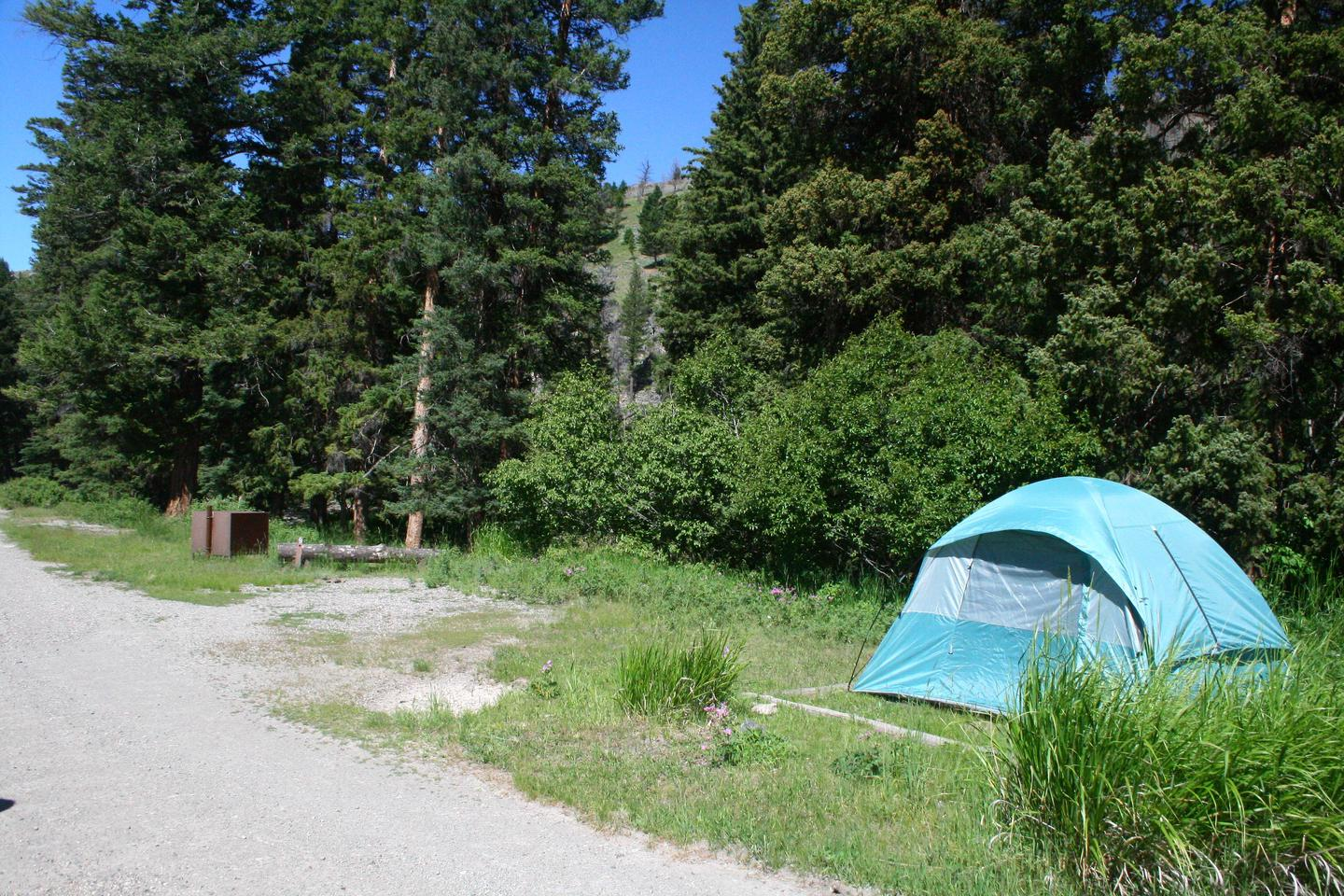 Slough Creek Campground site #9.Slough Creek Campground site #9