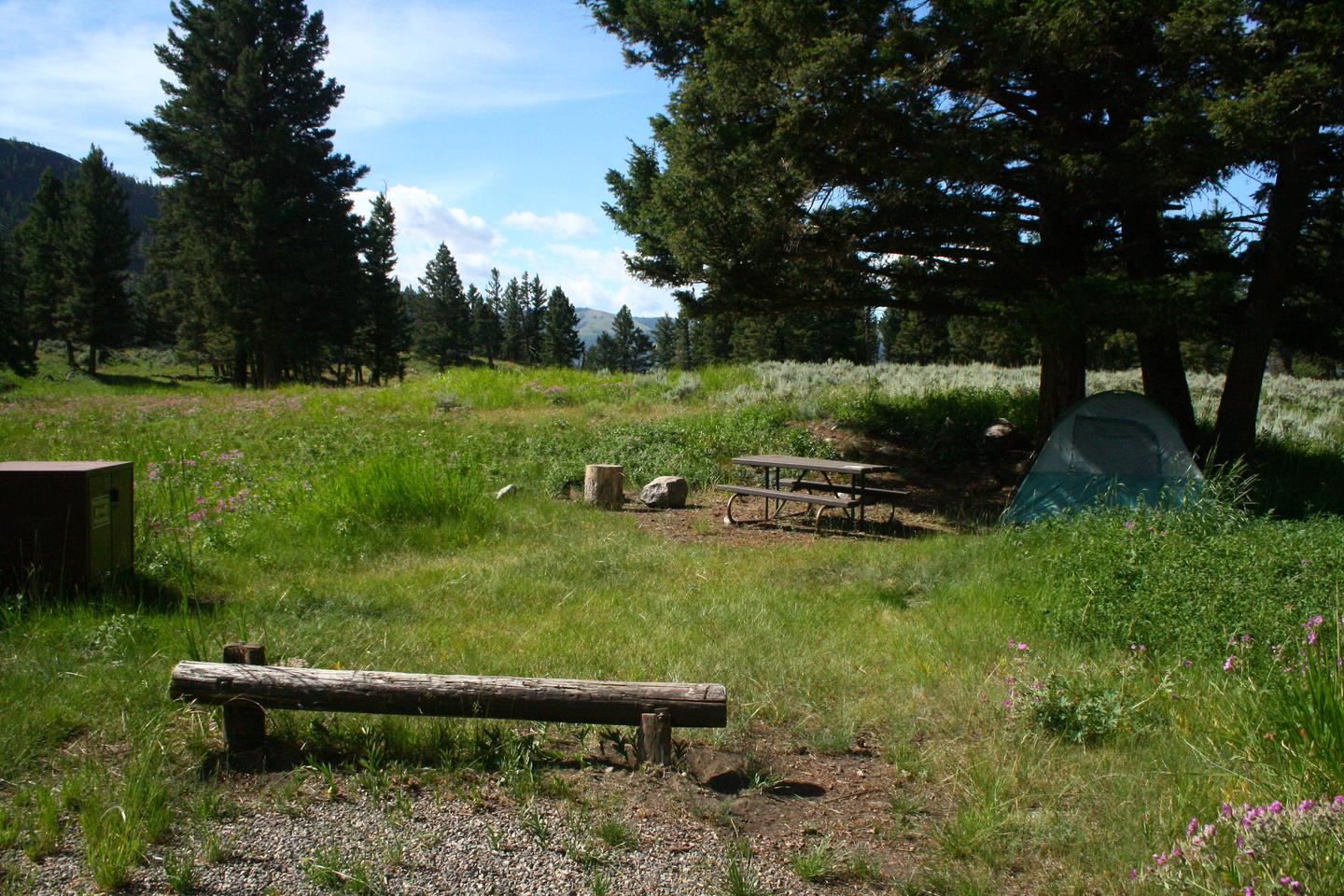 Slough Creek Campground site #8