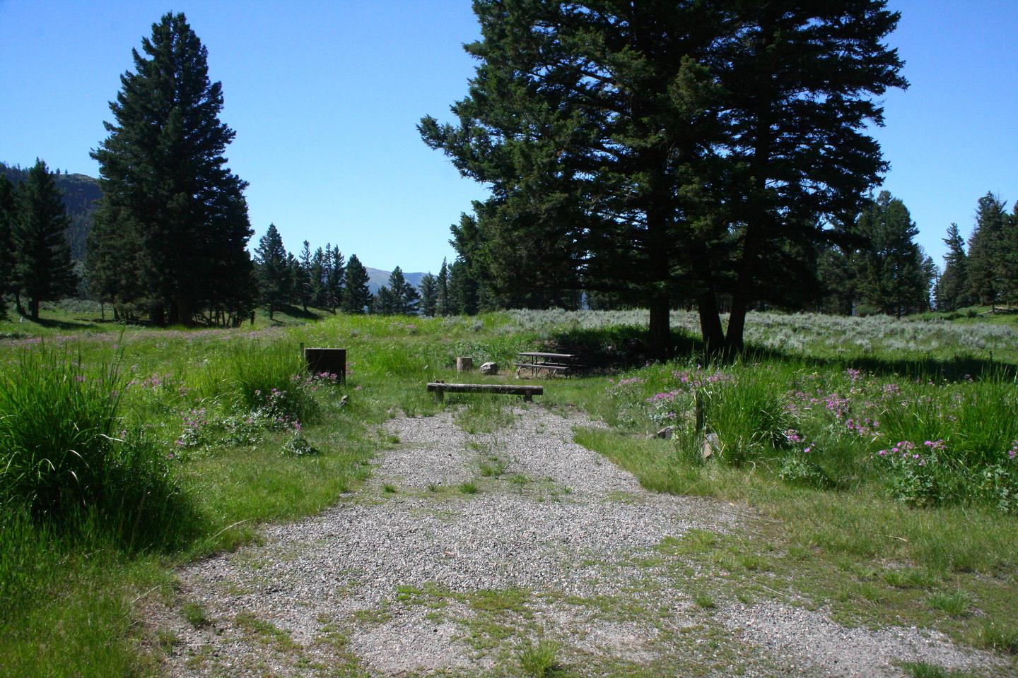 Slough Creek Campground site #8...Slough Creek Campground site #8