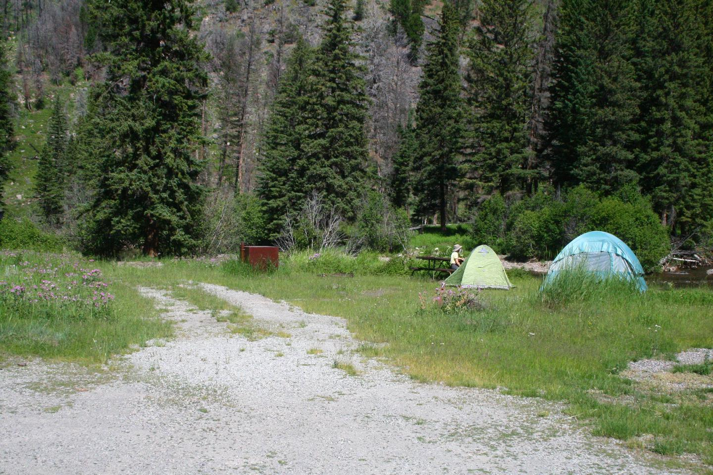 Slough Creek Campground site #7