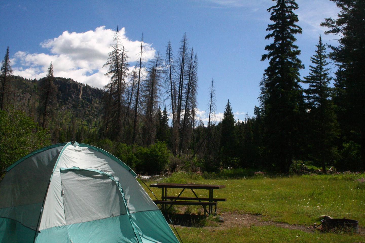 Slough Creek Campground site #5