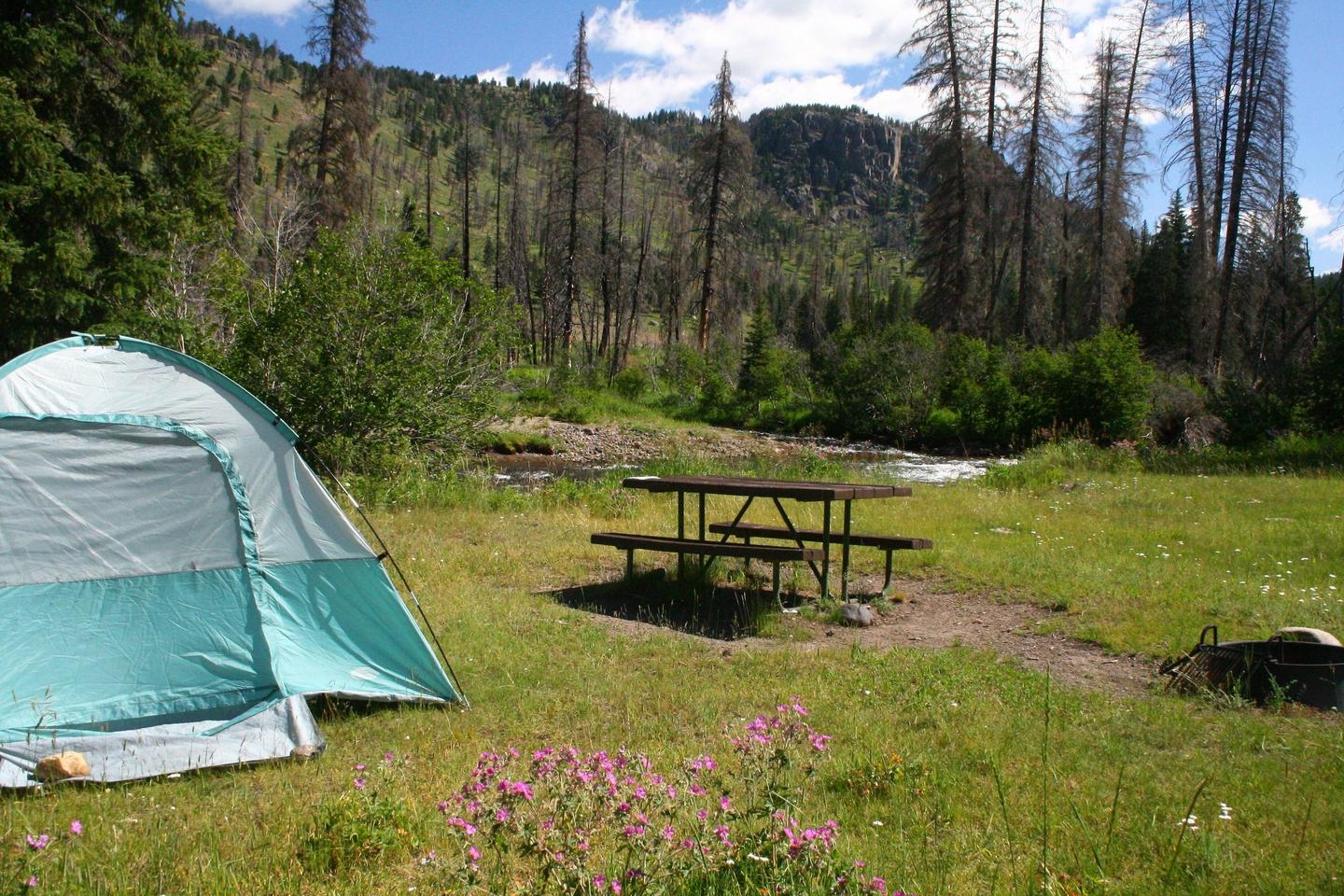 Slough Creek Campground site #5..Slough Creek Campground site #5