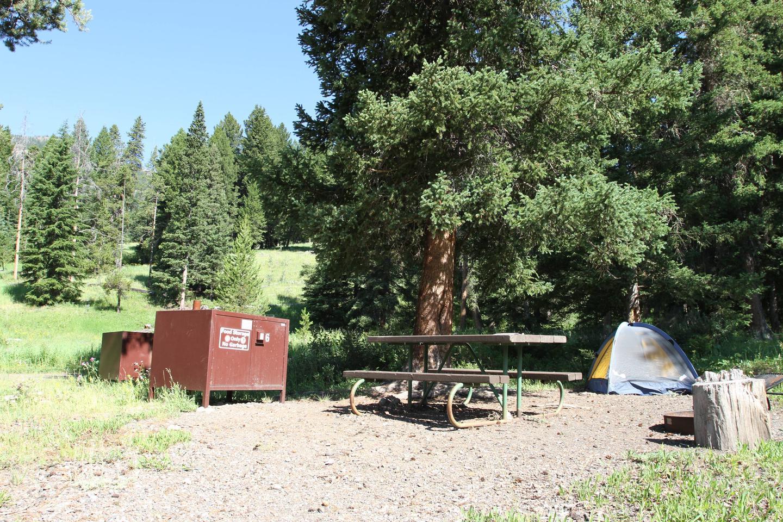 Pebble Creek Campground site #6