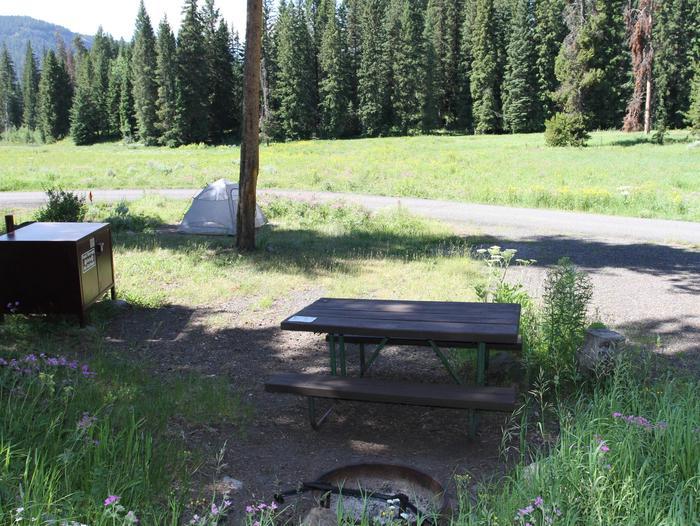 Pebble Creek Campground site #7