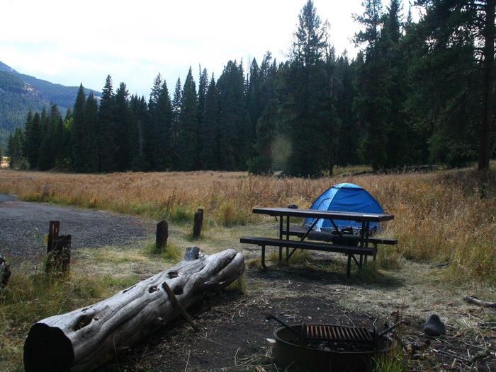 Pebble Creek Campground site #8