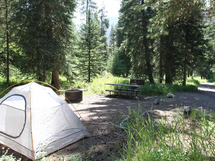 Pebble Creek Campground site #9
