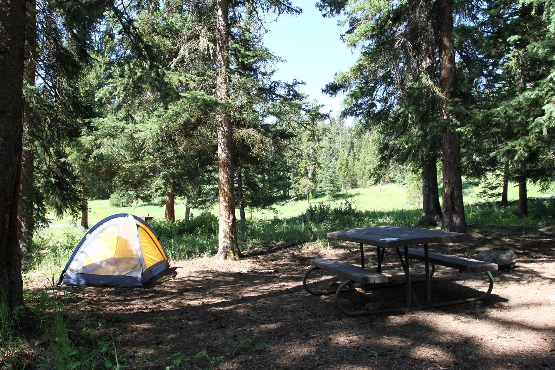 Pebble Creek Campground site #10.Pebble Creek Campground site #10