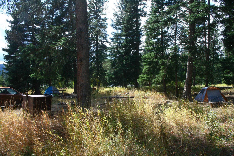Pebble Creek Campground site #20..Pebble Creek Campground site #20