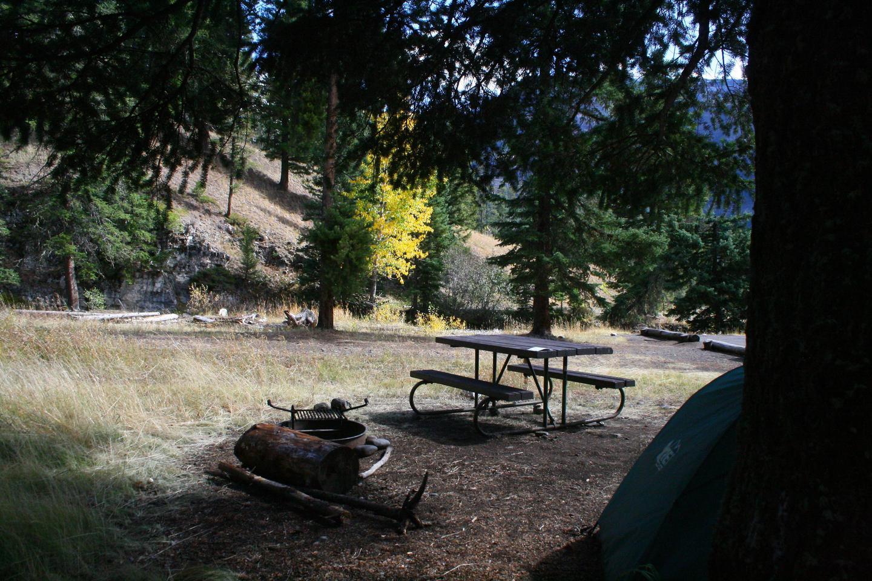 Pebble Creek Campground site #21