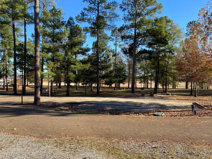 North Abutment Campground Site ElevenNorth Abutment Site Eleven