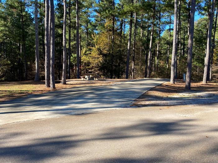 North Abutment Campground Site Thirty-OneNorth Abutment Site Thirty-One