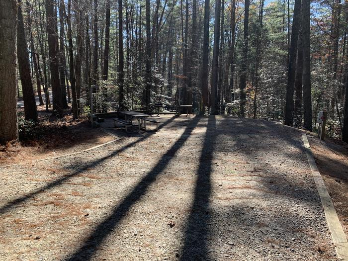 Flat gravel site with table, fire pit, grill, surrounded by tall pines Table, fire pit, grill