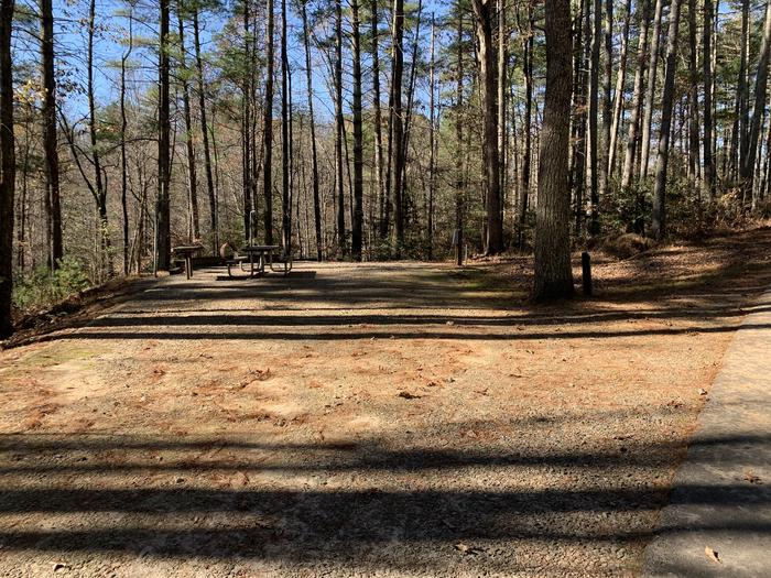 Gravel site with table, fire pit, grill, surrounded by tall pines Gravel site with table, fire pit, grill
