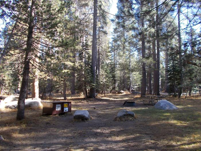 Food locker, picnic table, and fire ringSite 2