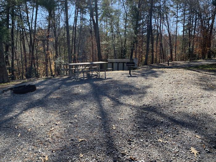 Gravel site with fire pit, table, grill with tall pines Gravel site with fire pit, table, grill