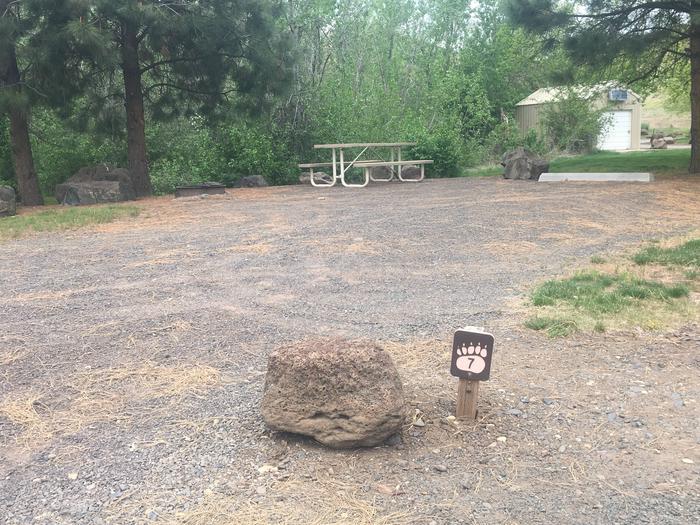 Mann Creek Site 7