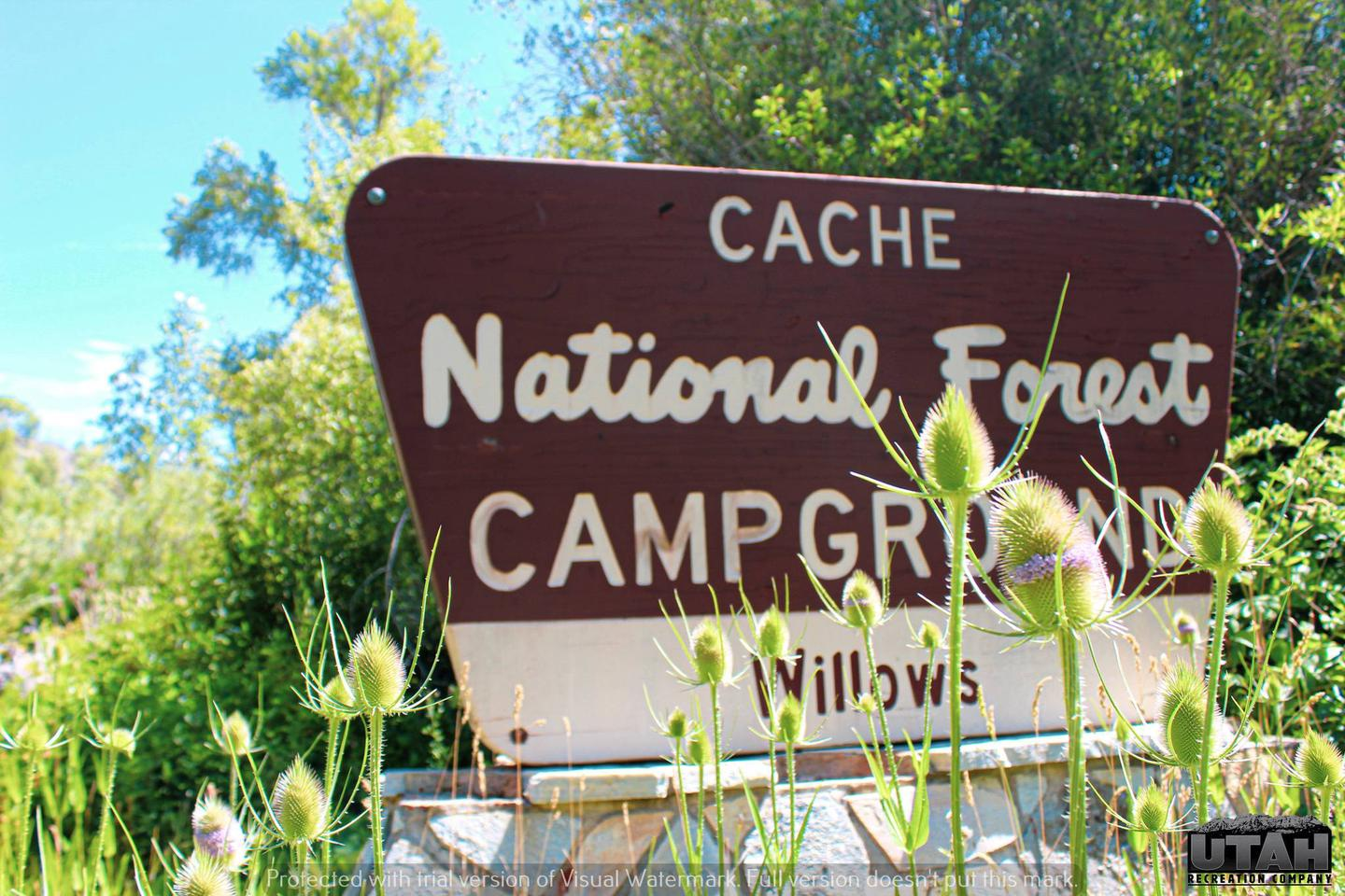 Willows Campground sign
