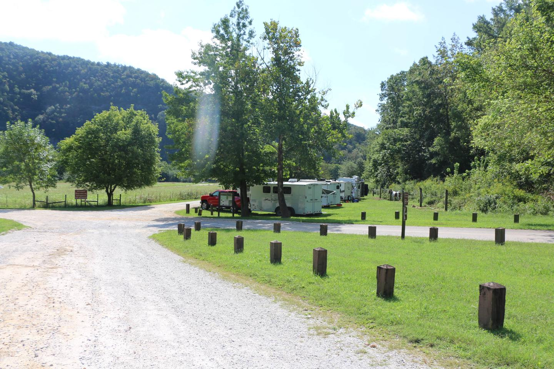 Steel Creek Horse Camp Site #27-2Steel Creek Horse Camp Site #27