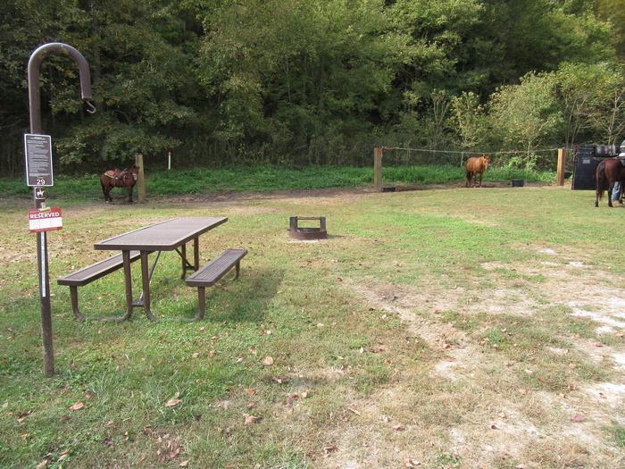 Steel Creek Horse Camp Site #29 (photo 3)Steel Creek Horse Camp Site #29