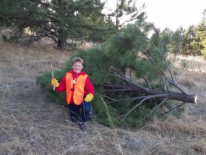 Young man holding axe kneeling by cut tree.A boy and his Christmas tree.