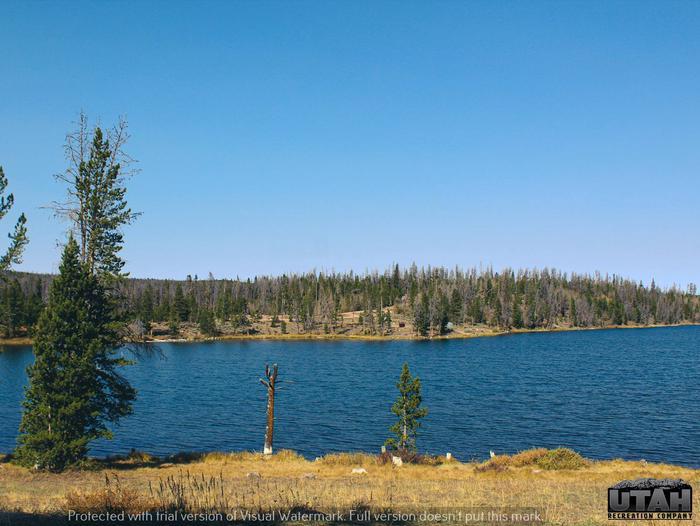 Marsh Lake Campground