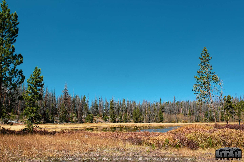 Marsh Lake CGMarsh Lake Campground