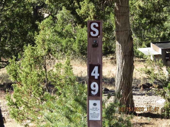 Campsite #49Camp area #49