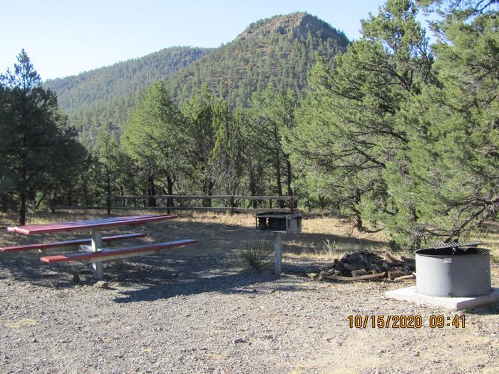 Grill, table and fire pitGrill, table, and fire pit area