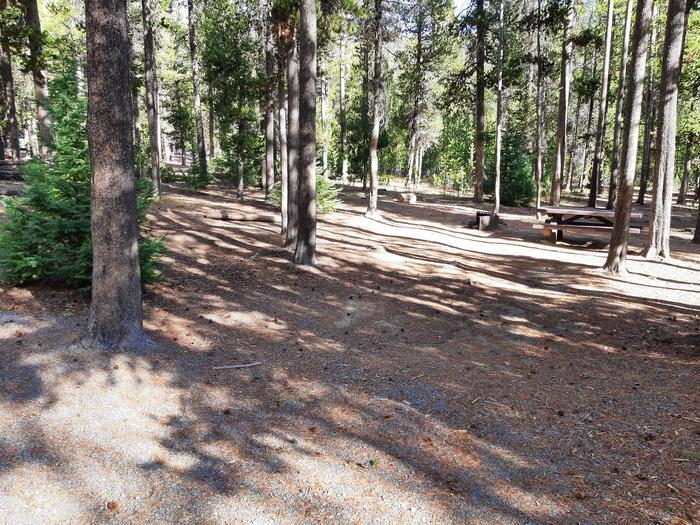 Cinder Hill Site 88