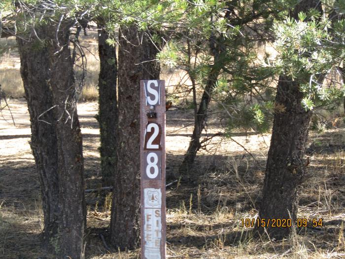 Campsite #28Camping site #28