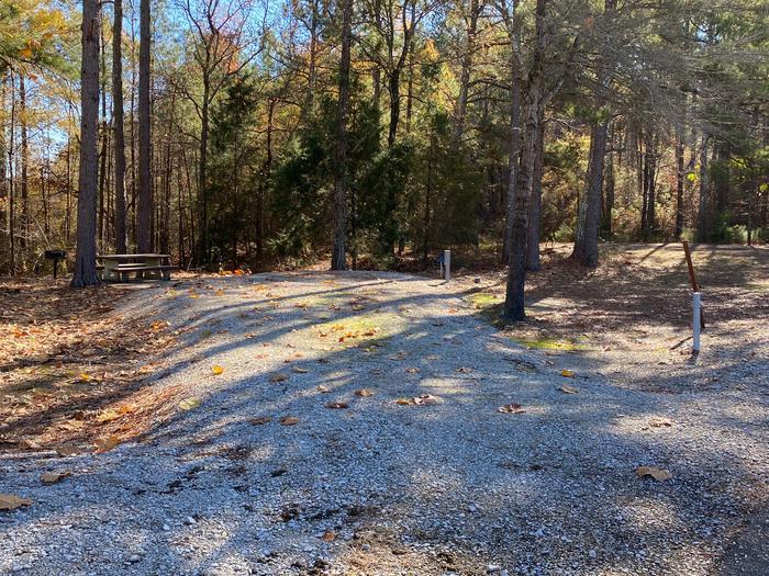 Gums Campground Site 1