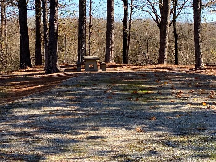 Gums Campground Site 2