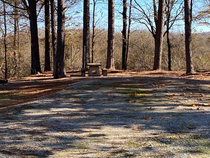 Gums Campground Site 4