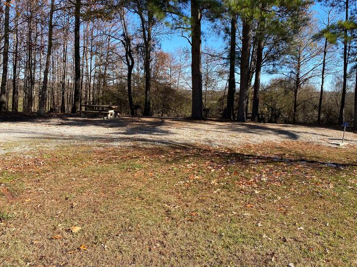 Gums Campground Site 5