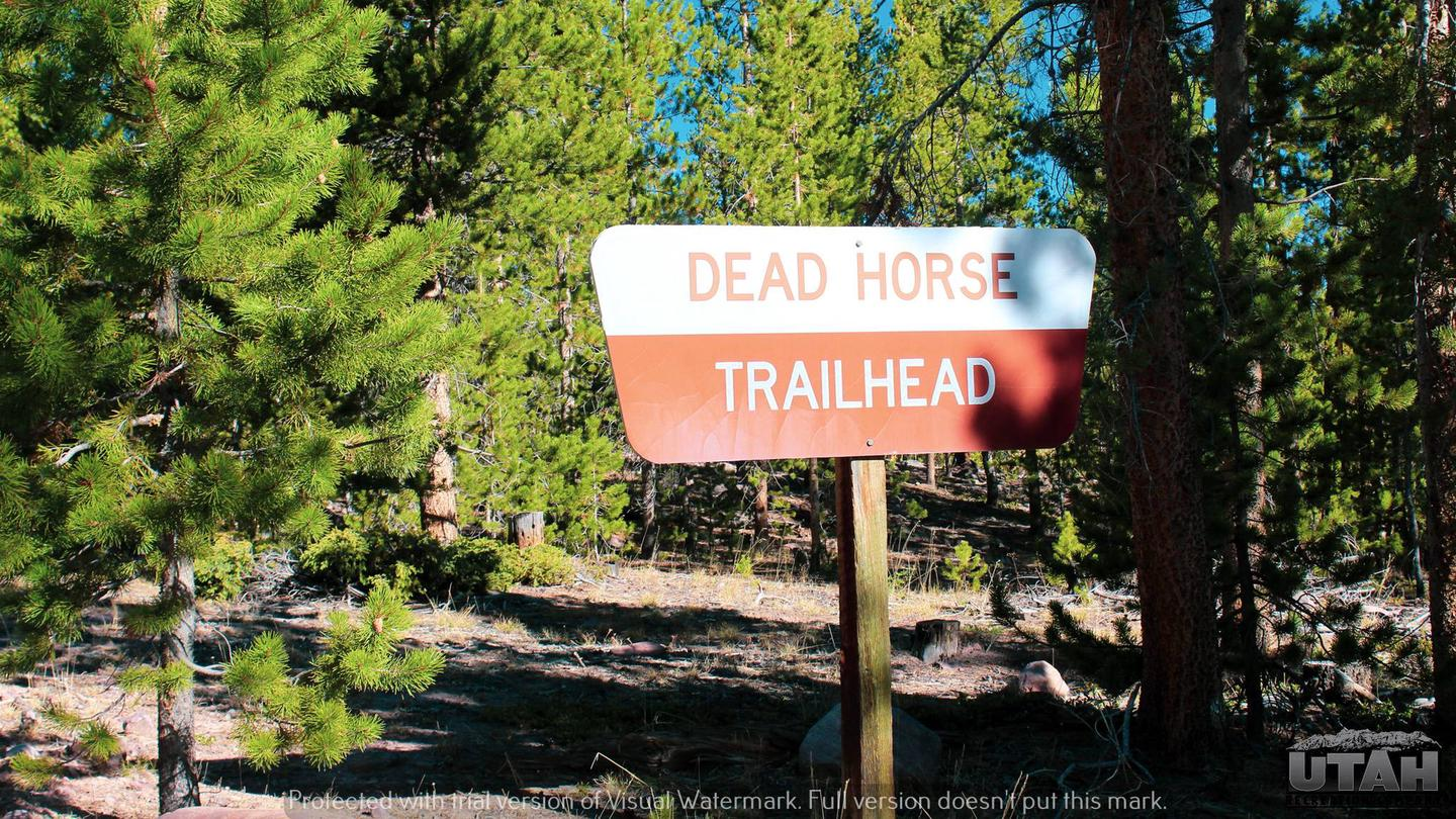 Deadhorse Trailhead Campground