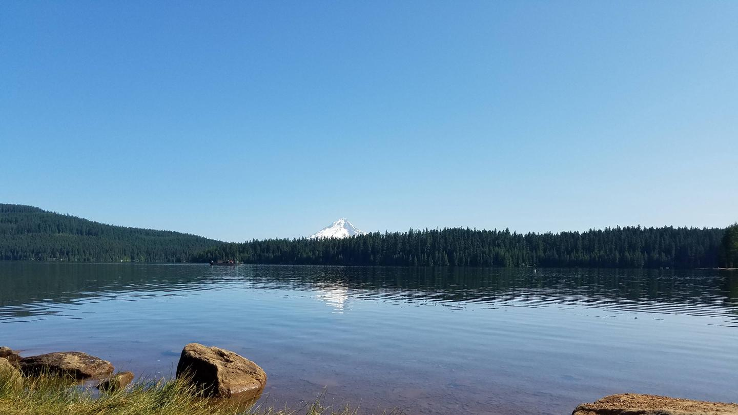 View of Mount Hood from Gone CreekMt. Hood